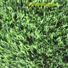 Искусственная трава Ливерпуль 35, фото, доставка, укладка, недорого